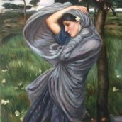 Boreas - Waterhouse ALTA QUALITA'