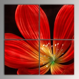 red flower (40x40cm)x4pcs